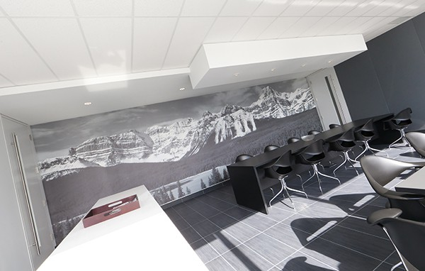 Graphic wall treatment