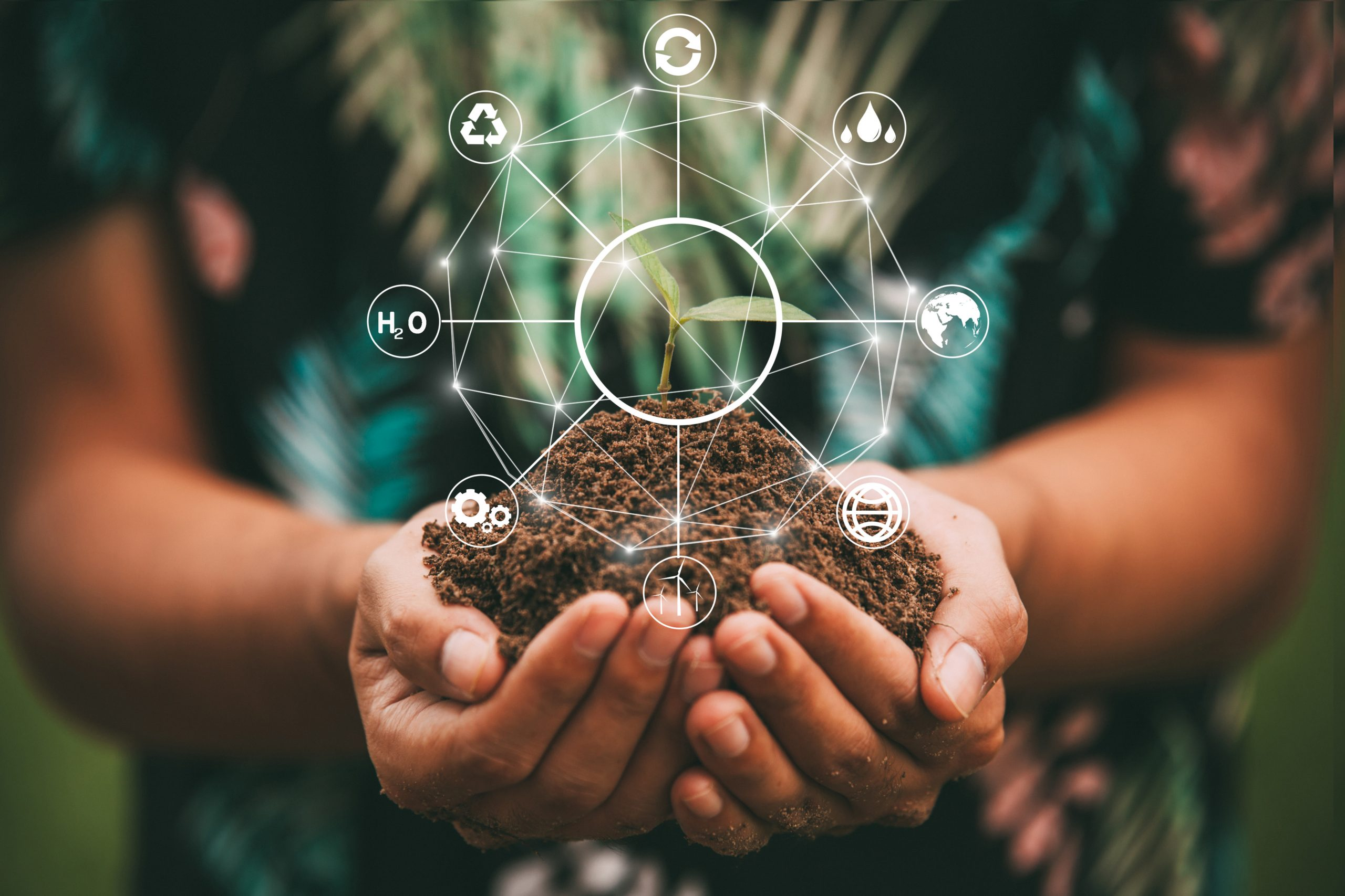 Corporate Sustainability scaled