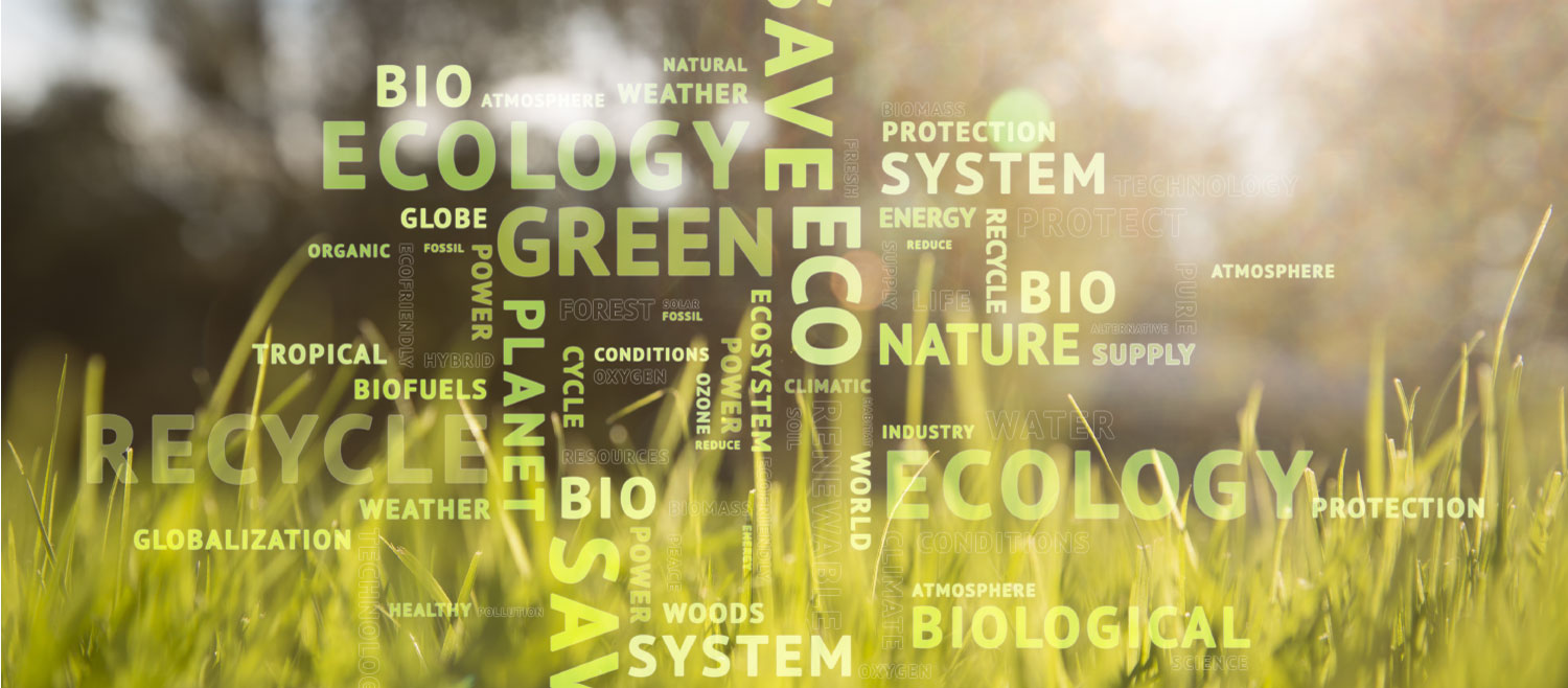Carbon Offsetting Word Cloud